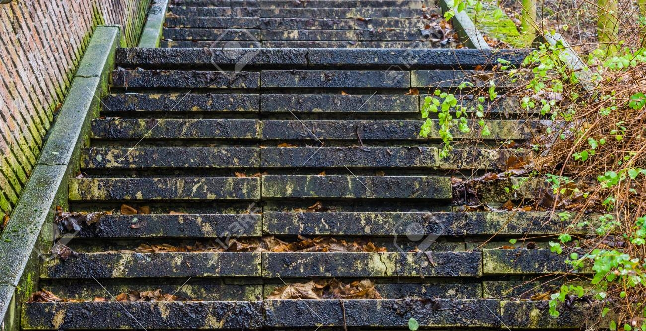 Closeup Of A Slippery Staircase In Autumn Season Outdoor   Slippery Wood Stairs Outdoor   Composite Decking   Non Slip Stair Tread   Porch   Hardwood   Prevent Slips