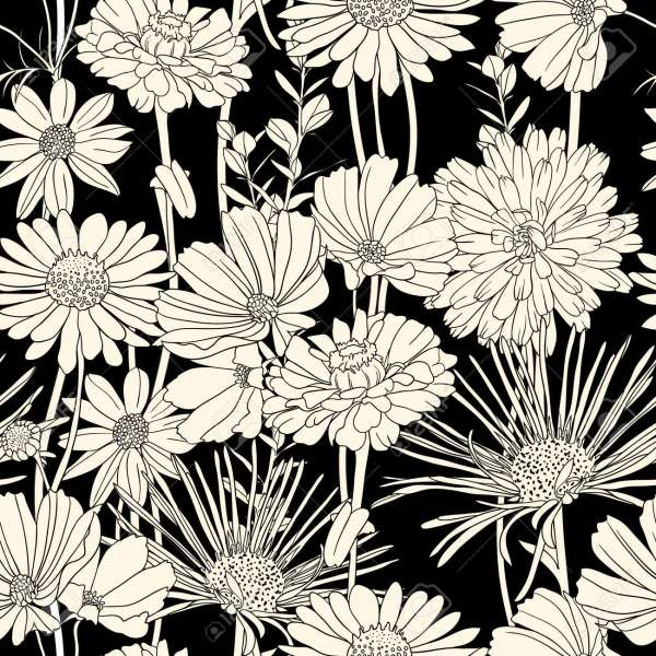 Floral Seamless Pattern With Hand Drawn Flowers  Black And White     Floral seamless pattern with hand drawn flowers  Black and white Stock  Vector   11964903