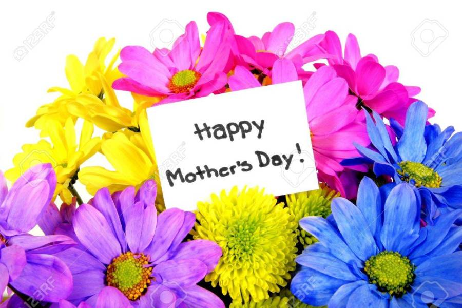 Colorful Mothers Day Flowers With Gift Tag Stock Photo  Picture And     Colorful Mothers Day flowers with gift tag Stock Photo   13211522