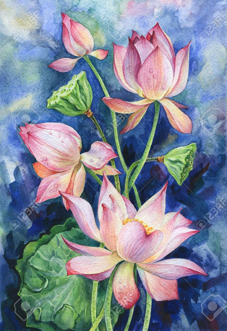 Watercolor Illustration  Bouquet Of Pink Lotus Flowers On A Blue     Illustration   Watercolor illustration  Bouquet of pink lotus flowers on a  blue background