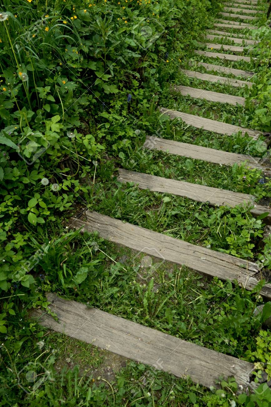 Outside Steps Stock Photo Picture And Royalty Free Image Image | Outside Steps For Seniors | Dreamstime | Stair Treads | Handrail | Stainless Steel | Walkway