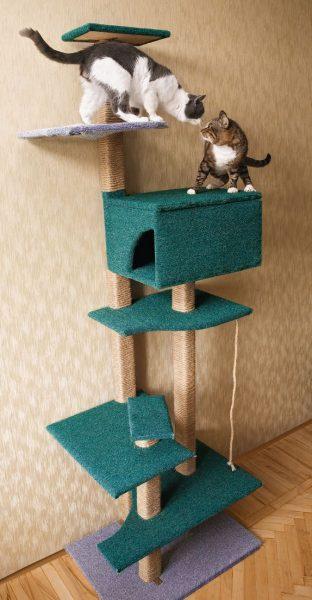 Zelfgemaakte gamingcomplex voor twee katten