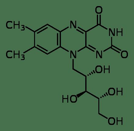 Biofidobacteria