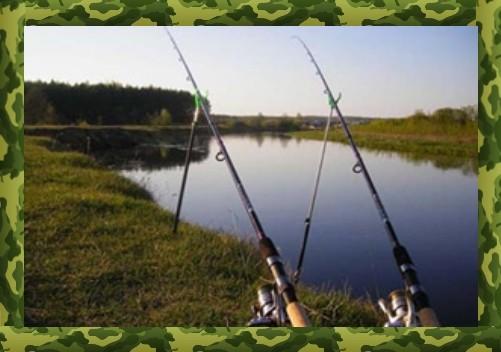 Choice of gear for carp fishing on macuha