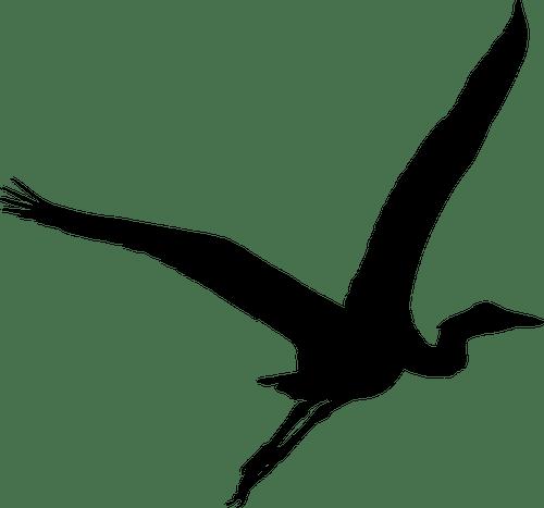 Silueta de la Garza | Vectores de dominio público