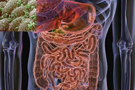 Large intestine under ribs full hd pictures 4k ultra full common causes of pain under right rib cage if you are suffering from a dull pain that becomes sharper after a period of time appendicitis may be the culprit ccuart Gallery