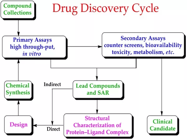 How To Start The Process Of Developing A Drug To Be
