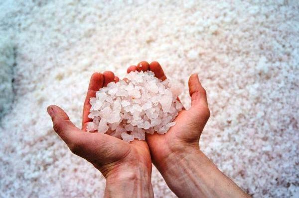 Sodium klorida - mineral vital