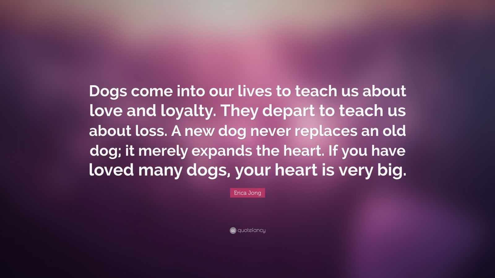 Dog Poems Loss About