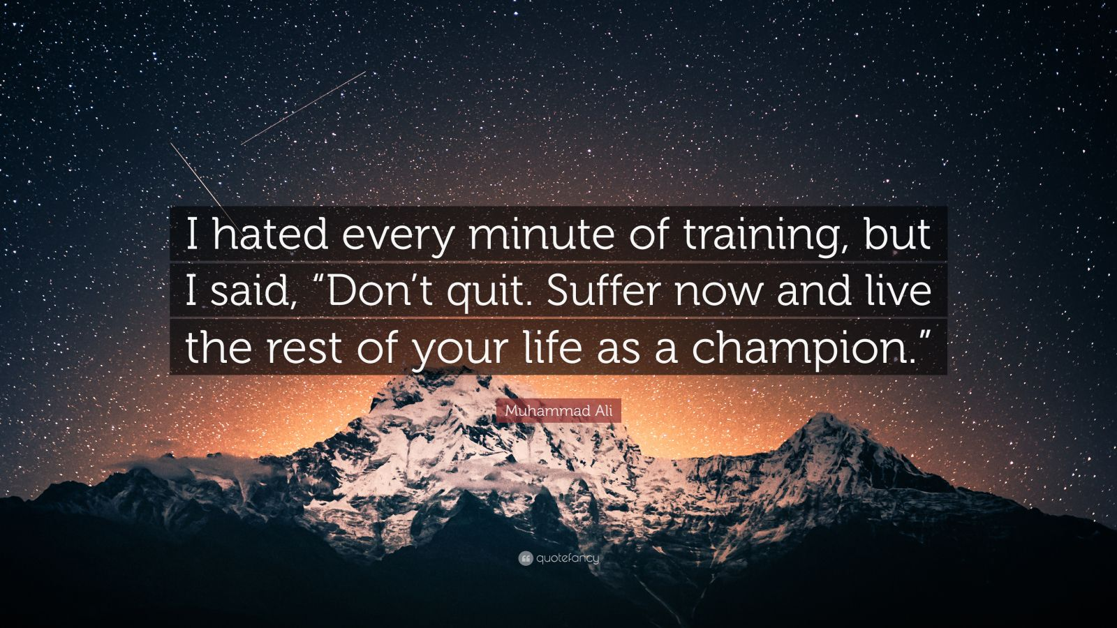 Motivational Quotes  100 wallpapers    Quotefancy Motivational Quotes     I hated every minute of training  but I said