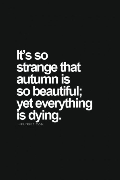 Dark And Twisted Quotes