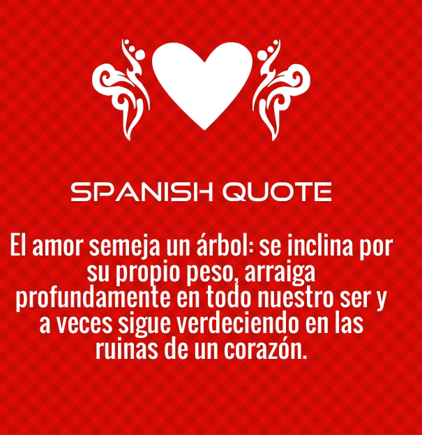 Spanish Quotes English Translation About Love