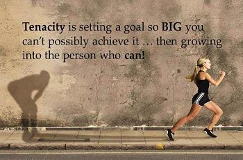 Tenacity is setting a goal so BIG you ca tenacity Quote