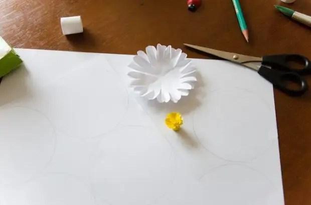 Coleccionar flor