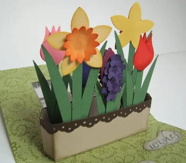 Hoa có hoa trong cửa sổ