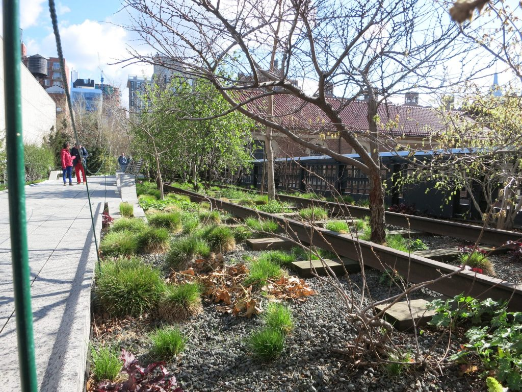 a view of a section of the High Line park