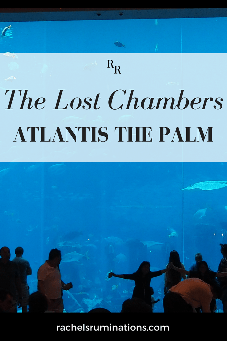 The Lost Chambers Aquarium really should be called the Atlantis Aquarium. At Atlantis The Palm Dubai Hotel, it's much more about atmosphere than education. #atlantisthepalm #atlantis #aquarium #dubai #uae #c2cgroup via @rachelsruminations