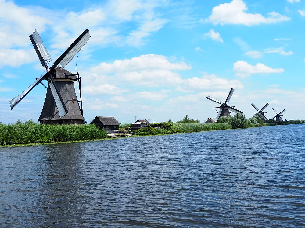 An image of how Americans see the Dutch: a row of 4 old-fashioned windmills along a canal (or river).