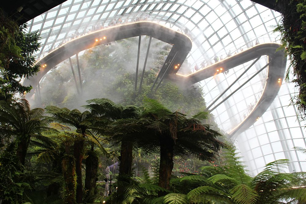 Under a very high greenhouse glass roof, a hill covered in greenery, with trees in front of it at the bottom of the picture. Sticking out from the hill are two curved walkways where people, looking very small, walk. Much of the hill is obscured by mist.