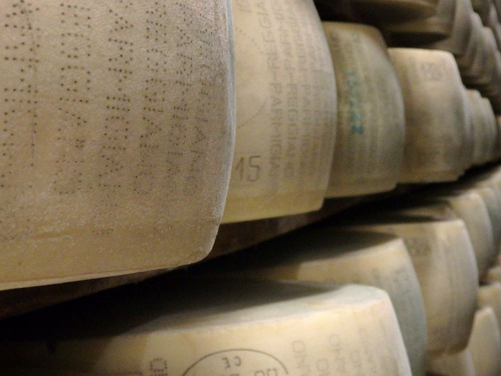 """A look down a row of cheese rounds, with a bit of the rows above and below them of the drying shelves visible. The nearest one is clearest and is printed with words """"parmigiano"""" and """"reggiano"""""""