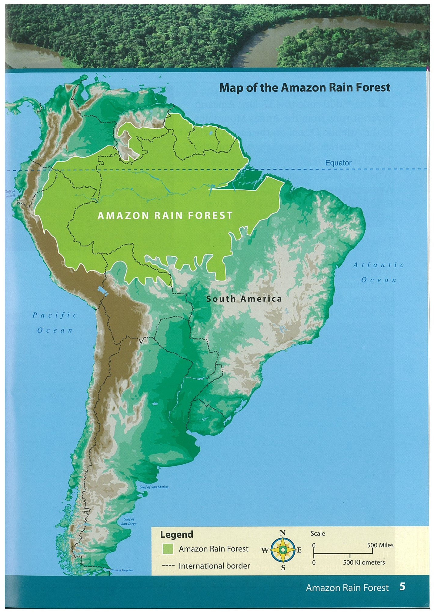 Is the amazon basin and the amazon rainforest the same ...