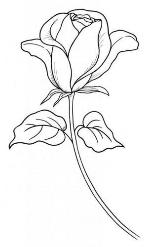 разукрашка цветок