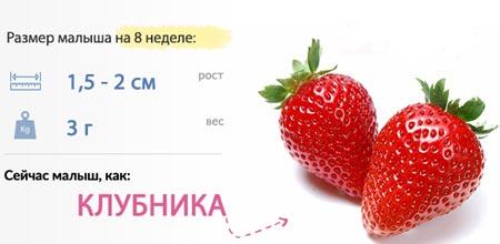 Tamaño de la fruta durante 8 semanas