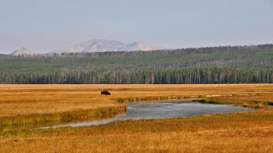 5-USA-Wyoming-Yellowstone-Park-24