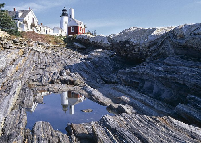 Tide Pool Reflection Pemaquid Point Lighthouse Maine