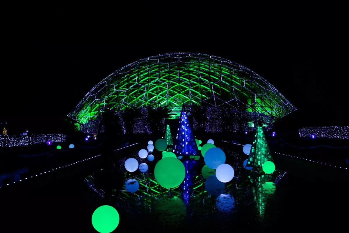 Zoo Christmas Lights St Louis