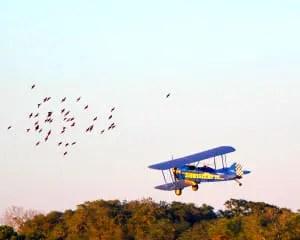 Smoky Mountain Biplane Ride Intro Flight 8 Minutes