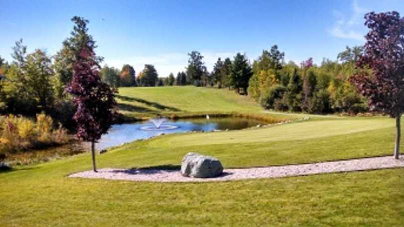 Cedar Valley Golf Club   Michigan More To Explore