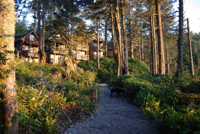 Terrace Bc Lodging