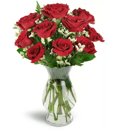Devoted to You       Red Roses   Moline  IL Florist Devoted to You       Red Roses