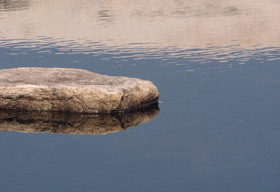 Rock Ponds Designs