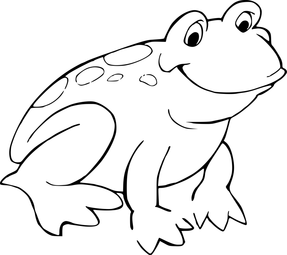 Frog | Free Stock Photo | Illustration of a cartoon frog ...
