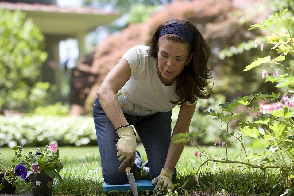 Gardening   Free Stock Photo   A woman enjoying gardening ...