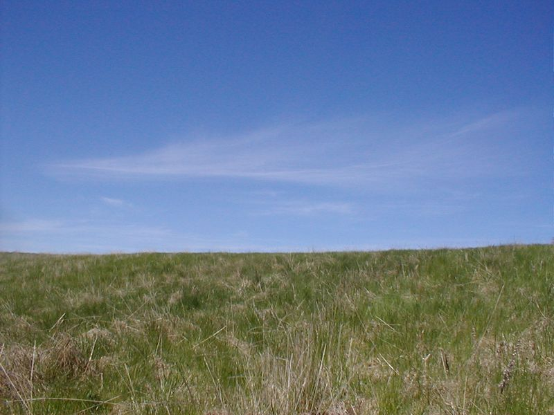 Field Free Stock Photo Blue Sky Over A Green Field
