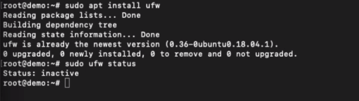 Install UFW Firewall and view Running Status
