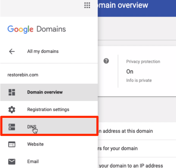 Open DNS Settings in Domain Registrar