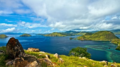 Habitat of Komodo Dragon: Facts about Komodo Island in ...