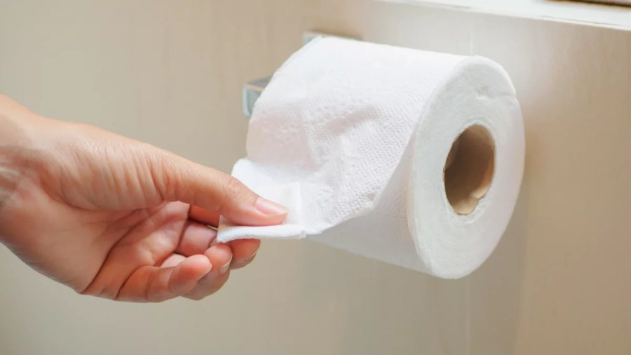 The Best Toilet Paper of 2018   Reviewed