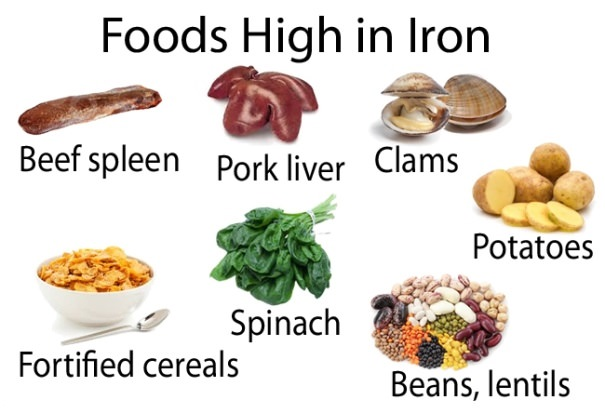 foods high in iron list pdf