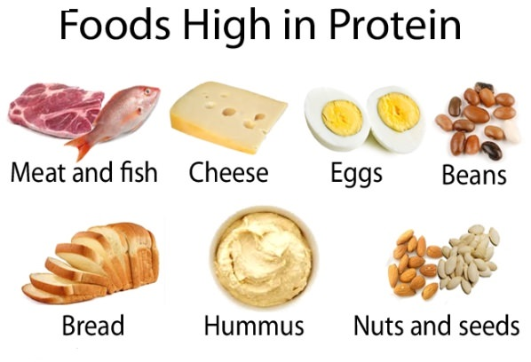 Image result for protein -dairy foods pic