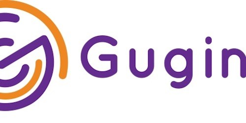 Gugin - project leadership