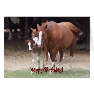 Horse Lovers Birthday Cards Photocards Invitations Amp More
