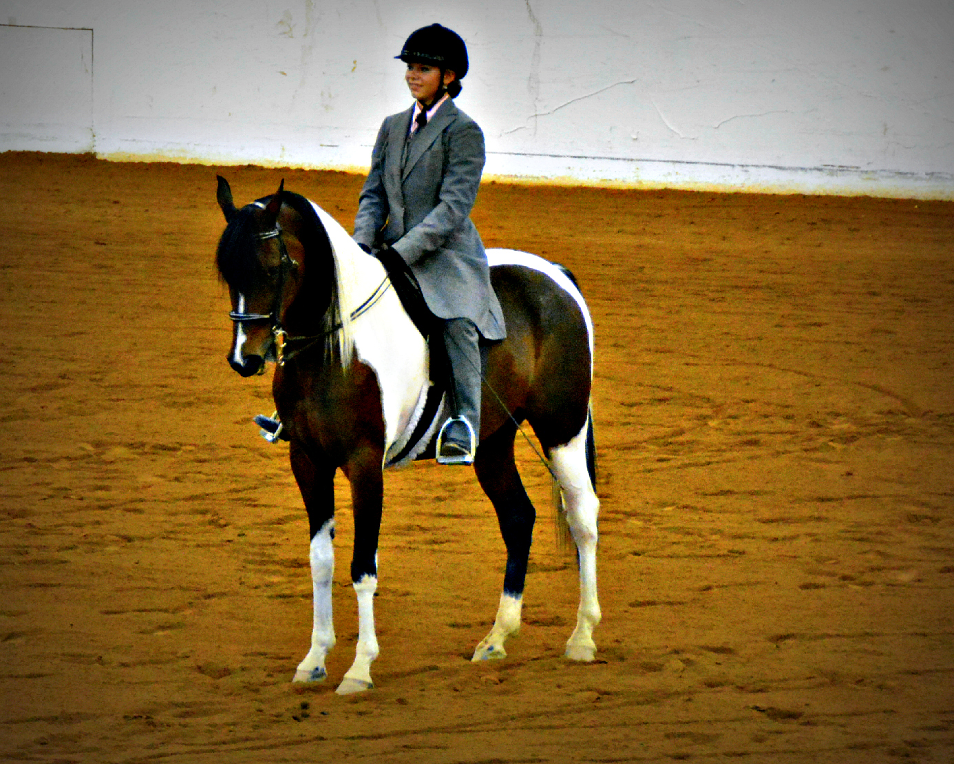 Virginia 4 H State Horse Show Photos Roanoke Equestrian