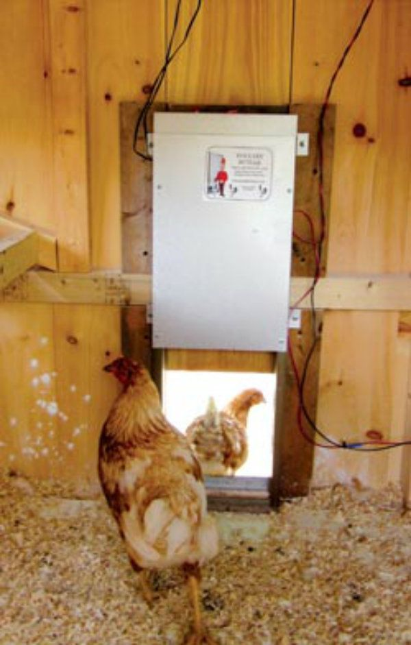 Le Meilleur Solar Powered Chicken Coop Light Auto Open Door Etc Ce Mois Ci