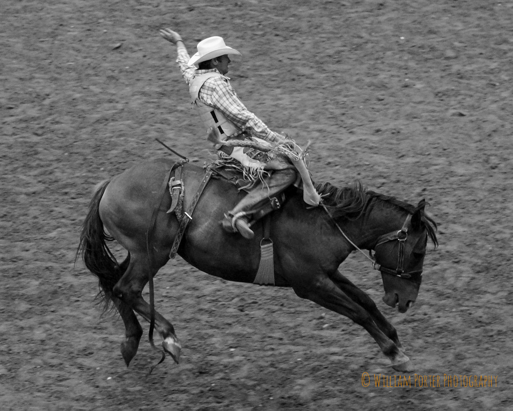 Le Meilleur Rodeo High Speed Shooting And One Reason Photos Are Ce Mois Ci