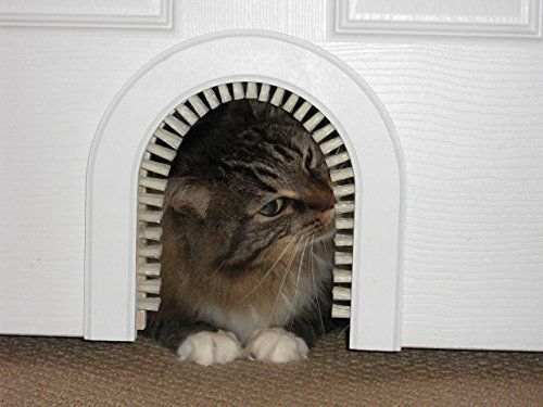 Le Meilleur 8 Handsome Ways To Hide Your Cat S Litter Box Huffpost Ce Mois Ci